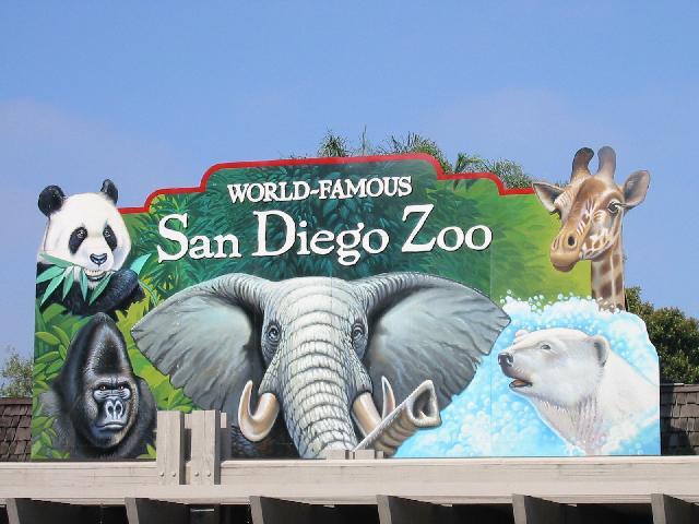 San Diego Zoo Spring Camp Review - Green-Mom com