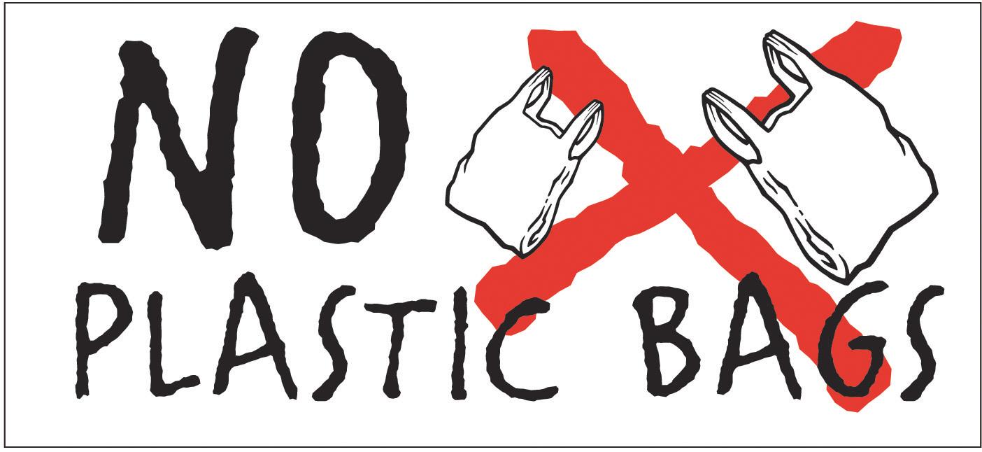 anti plastic bag essay