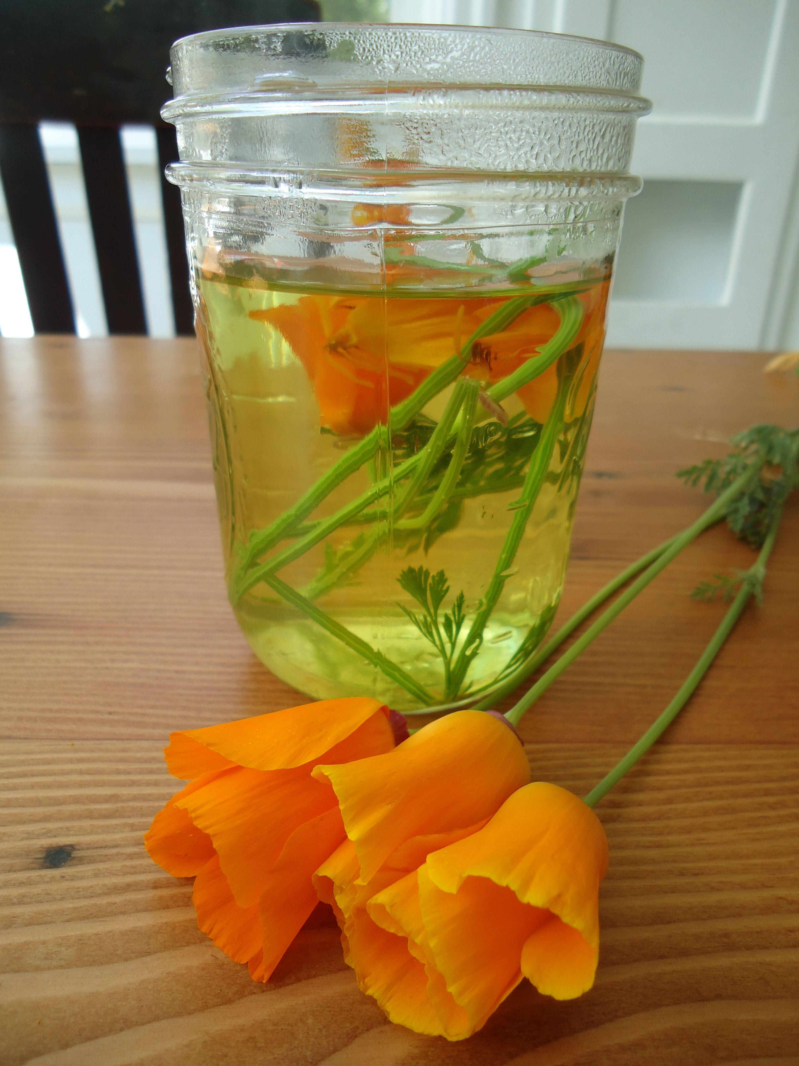Let Flowers Seduce You Medicine Making Nature Journaling Enjoying