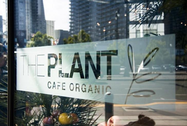 The Plant Cafe Marina Menu