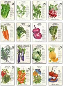 heirloom_seeds poster