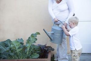 Noah watering garden