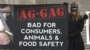 aggag-article