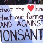 Monsanto Protection Act—Protecting Who or What?