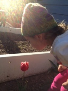 Kids gardening article 2