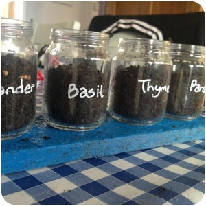 baby food jar herb garden