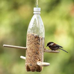 plastic bottle bird feeder