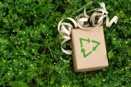 Green Christmas Gifts - Green-Mom.com