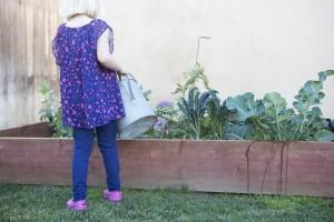Bella watering garden
