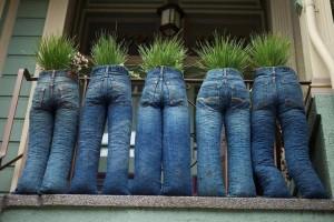 Pants Pots