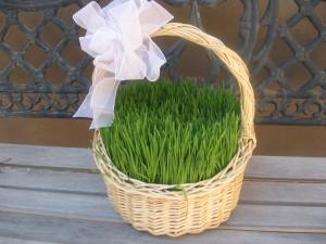 baskets-004-300x225