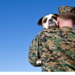 Rescue Dogs Help Veterans