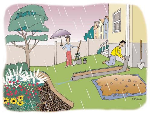 Rain Drops Keep Falling Into My Rain Barrel Harvesting