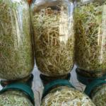 sproting jars