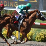 Another Racehorse Dies at Del Mar Race Track