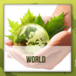 Plastic Diet—Tips on Going Plastic-free
