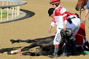 horse_a_ebells_600