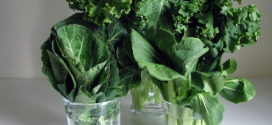 Making The Most Of Your Veggies and How to Extend Its Life