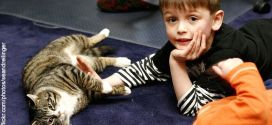 Facilitate Healthy Relationships between Kids and Pets
