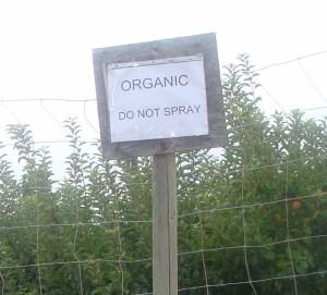 Organic no spray