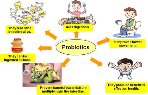 What Foods Have Naturally Occurring Probiotics