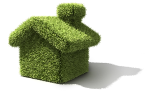 Greenyfy home