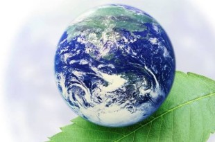 earth-day feature