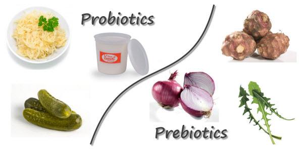 Natural Probiotics Food Sources