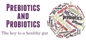 prebioticsandprobiotics for healthy gut