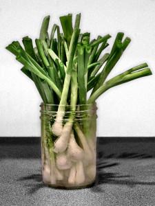 storing produce in glass jars