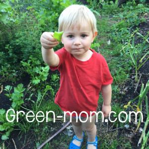 Liam gardening