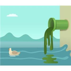 drain & sewage