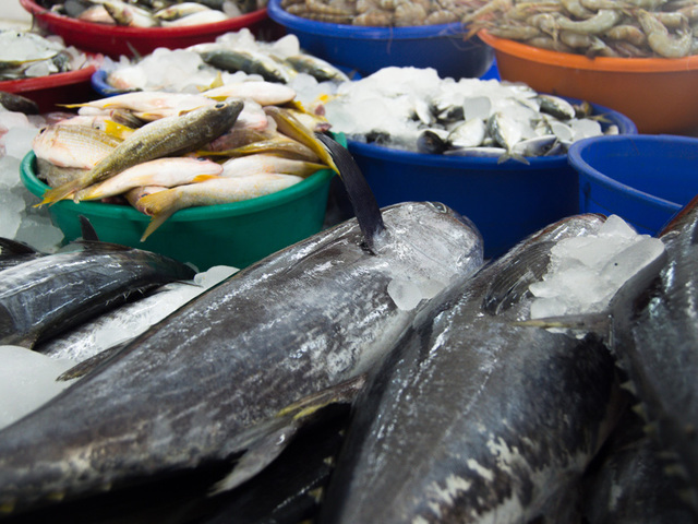 Fishermen s markets california s pacific to plate law for Pacific fish market