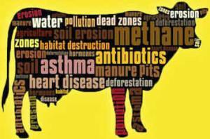 mdi-factory-farm-awareness-coalition