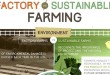 Factory-Farming-versus-Sustainable-Farming