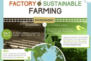 Factory-Farming-versus-Sustainable main