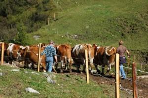 family-farmer-