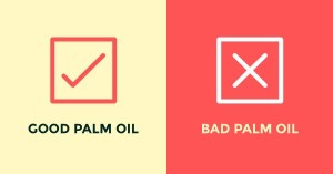 good vs. bad palm oil