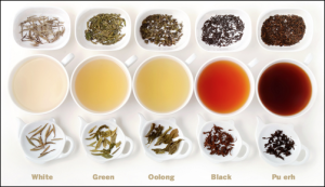 Black-tea-Green-Tea-White-tea-Oolong-tea-Pu-erh-tea_thumb3