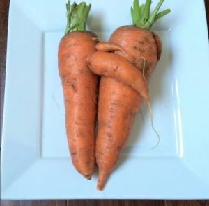 carrots hugging