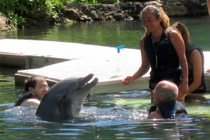 swiming with dolphine ban