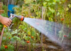 water-for-garden