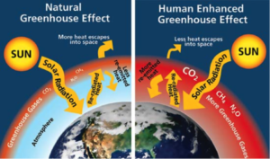 Image from http://www.c2es.org/science-impacts/basics