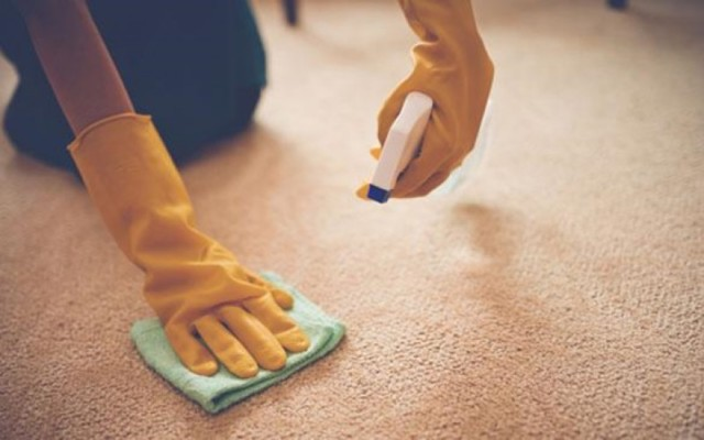 Healthy Home Best Tips For Non Toxic Carpet Cleaning Following Today